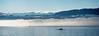 Wintersonne (torremundo) Tags: männedorf zürichsee schweizeralpen sonne wolken wellen nebel licht gegenlicht stimmung