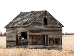 Rural decay (annkelliott) Tags: alberta canada seofcalgary building structure architecture barnhouse wooden weathered old collapsing decay ruraldecay ruralscene rural grass field tree filteraddedinpostprocessing outdoor fall autumn 30october2017 fz200 fz2004 panasonic lumix annkelliott anneelliott ©anneelliott2017 ©allrightsreserved