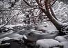 Rincones Invernales (Chusmaki) Tags: ngc nieve rascafria madrid encanto paisaje río bosque