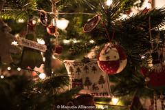 272A3549-1 (manuela albanese) Tags: christmas xmasmood natale canon manuela albanese casa home boken animale albero relax homesweethome casadolcecasa ilmioalbero