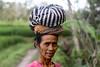 Ubud Rice fields (Name102) Tags: ubud bali asia indonesia travel travelphotography worldtravel canon canonphotography canondslr