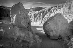 DSCF0702 (rjosef) Tags: borrego desert