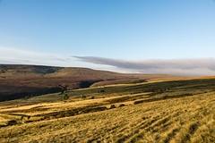 Huddersfield Hills Aug 2017 103 (Mark Schofield @ JB Schofield) Tags: hills huddersfield moors moorland pennines pennineway wessenden yorkshire wessendenhead landscape eos 5dmk4 canon