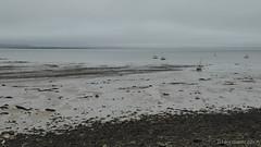 Swansea Bay (ExeDave) Tags: p1080707 swansea abertawe bay the mumbles mwmbwls south s wales cymru gb uk coast tidal beach rocks rocky landscape waterscape seascape august 2017 holiday
