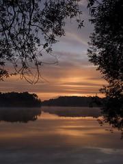 Un jour en septembre ** (Titole) Tags: sunrise titole nicolefaton branches vertical scape bassindetrévoix trévoix thechallengefactory