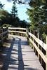 (McKenzie McCrea) Tags: laketahoe sandharbor trails