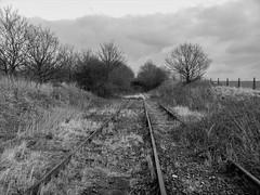 Distant Farm Bridge (Jason_Hood) Tags: southstaffordshireline southstaffordshirerailway hammerwich blackandwhite monochrome inexplore