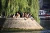 Square du Vert-Galant (woto) Tags: paris sena river square plaza gente people water río