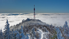 Donon (Jan 15) - 056 (sebwagner837_55) Tags: donon alsace bas rhin basrhin lorraine grand est neige vosges mer nuages france