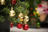 _MG_4226 NATAL (Paulo Henrique Zioli) Tags: christmas natal vacaciones weihnachten noël ولادي árvore de árvoredenatal bolas balls dof heart