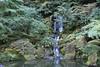 Japonese Garden Lake (elianek) Tags: garden jardim cascata japonese portland oregon lake lago water waterfall cascade japones