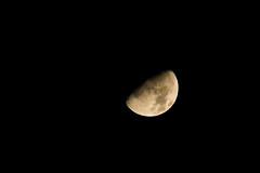 early morning moon (362/365) (werewegian) Tags: moon waxing halfish dec17 werewegian 365the2017edition 3652017 day362 28dec17