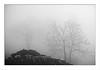 hoarfrost 2 (Ernst Haas) Tags: telfes stubaital innsbruckland laender tirol oesterreich telferwiesen