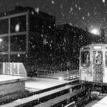 Snowy El thumbnail