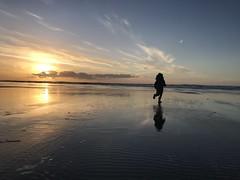 Joy (RaminN) Tags: sunset manzanita coast oregon