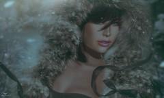 Hannah~It's a new Year... (Skip Staheli *FULLY BOOKED*) Tags: skipstaheli secondlife hannahflower avatar virtualworld dreamy digitalpainting fur winter snow snowflakes portrait closeup
