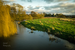 Send Church on the River Wey (ed027) Tags: ifttt 500px trees field sky landscape sunrise sunset winter water cold river religion church tree beautiful natural orange grass green peaceful fields peace dawn long exposure canal stream farm dusk willow grassland light