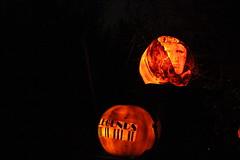 IMG_6538 (comtrag) Tags: jackolanterns rogerwilliamszoo rhodeisland halloween pumpkins pumpkincarving