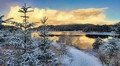 Djupadalen, Norway (Vest der ute) Tags: g7xm2 g7xll norway rogaland haugesund eivindsvatnet water waterscape winter snow trees tree walkingpath landscape lake reflections sky clouds outdoor fav25 fav200