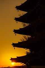 Sunrise at a five-story pagoda (aotaro) Tags: kawagawa korinjitemple sal70300g kawasaki temple ilce7m2 afivestorypagoda japan pagoda