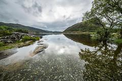 Ireland September 2016 (janeway1973) Tags: irland ireland irisch green beautiful county kerry lake see water wasser view reflection