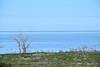 Menindee Lakes, NSW (bushies20) Tags: menindee menindeelake nsw