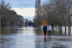 Flood - Rhine River (ivlys) Tags: deutschland allemagne germany rhein rhine fluss river überflutung flood b42 rheinuferstrase oestrichwinkel rheingau ivlys