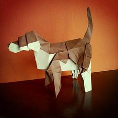 Cane, dog - Giuseppe Romeo (Stefano Borroni (Stia)) Tags: origami animali natura origamicdo2017 papiroflexia origamilove folding paper carta piegarelacarta cane dog animals arte