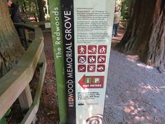 2017-110734 (bubbahop) Tags: 2017 rotorua newzealand redwood memorial grove hike