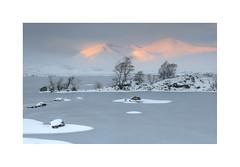 Rannoch Moor (Paul Cronin 1) Tags: canon canon5ds 2470f28mk2 scotland scottishhighlands landscapephotography snow ice sunrise black mount mountain rannochmoor delicate ngc httpwwwpaulcroninphotographycouk appicoftheweek