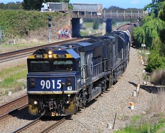 9015 9009 and 9012 speed through Tarro on an empty WK305G PN coal (bukk05) Tags: 9009 railpage:class=52 railpage:loco=9015 rpaunsw90class rpaunsw90class9015 9015 9012 wk305g tarro gt46cwm emd16710g3a 90class lionelcox neilbrooks peterevans markkerry marktonelli duncanarmstrong world wagons explore export engine emd electromotivediesel railway railroad railpage rp3 rail railwaystation railwaystations train tracks tamron tamron16300 trains photograph photo pn pacificnational loco locomotive horsepower hp flickr freight diesel station standardgauge sg spring 2017 australia artc zoom canon60d canon coal coaltrain pncoal nsw newsouthwales newcastle cityofnewcastle mainline signal