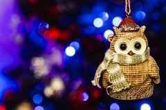 New Year is Coming (donnicky) Tags: macromondays newyear artificialillumination blurredbackground bokeh closeup dof home indoors lights macro nopeople owl publicsec toy