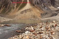 ADI KAILASH 2017 (KAILASH MANSAROVAR FOUNDATION) Tags: adi kailash