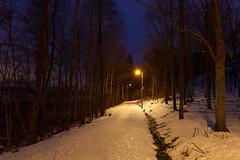 Path to the night (Antti Tassberg) Tags: laaksolahti puu hdr polku yö longexposure talvi dark lowlight night nightscape path trail tree winter espoo uusimaa finland fi