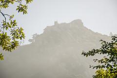 Castillo #2 (palm z) Tags: sintra portugal mirador castillo rama ramas