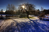 Strathaven Park 26 Dec 2017 00005.jpg (JamesPDeans.co.uk) Tags: boxingday landscape winter season roads prints for sale weather unitedkingdom man who has everything lanarkshire strathaven wwwjamespdeanscouk landscapeforwalls europe uk ice shadow plants nature greatbritain lightshade strathclyde snow bluesky trees digital downloads licence scotland path shade sun park gb tree britain james p deans photography