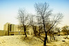 winter (gianclaudio.curia) Tags: inverno neve alberi nikon d40x nikond40x digitale nikkor1685 calabria naturebynikon