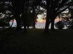 DLG-Gotland 1-8 (greger.ravik) Tags: gotland dlg medeltidsveckan medieval medeltid middle ages visby hav träd solnedgång mörkt sunset