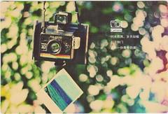 ARASHI 画像99