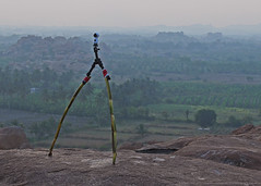 THE SWEET TRIPOD (GOPAN G. NAIR [ GOPS Photography ]) Tags: gops gopsorg gopsphotography gopangnair gopan photography sweet sugar cane tripod