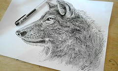 The Wolf (barmalisiRTB) Tags: animal animallover animals animallovers animaladdicts animalhead animalart animalkingdom animales animallove animalface animalrights animalrescue animalofinstagram draw drawing drawingpen drawings drawingoftheday barmalisirtb