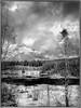 Titisee (adrianstadelmann) Tags: noiretblanc winter monochrome schluchsee blackforest schwarzwald