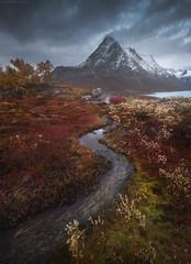 Greenland (Korzhonov Daniil) Tags: typical alt