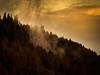 Clouds in the Forest (steelegbr) Tags: highlands queenelizabethforestpark scotland uk clouds evening orange outdoors rural sunset winter yellow