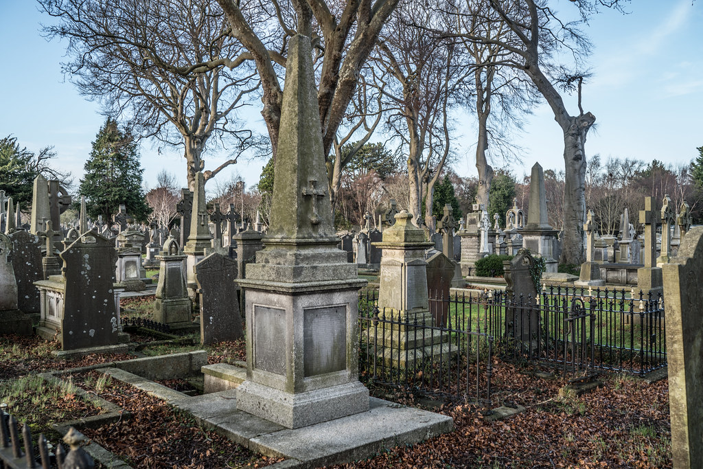 VISIT TO GLASNEVIN CEMETERY IN DUBLIN [FIRST SESSION OF 2018]-135046