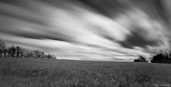 Field of... ©2017 Steven Karp (kartofish) Tags: field clouds longexposure tylerstatepark pennsylvania buckscounty fuji fujifilm xt2 blackandwhite monochrome extendedexposure trees