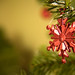 171214-ornament-christmas-tree-snowflake.jpg