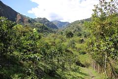 IMG_0699 (raikbeuchler) Tags: colombia precolombian tierradientro unescoweltkulturerbe unesco unescoworldheritagesite valledecauca tribes archäologie archeology 2017