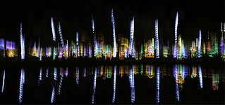 Holiday Lights Reflected