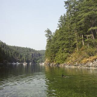Tidal Access